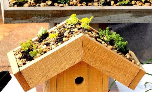 birdhouse roof design